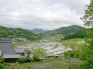 Terraced rice fields at Nagatani in Nose-Cho